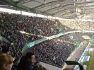 29.01.2011 VfL Wolfsburg - Borussia Dortmund 0:3